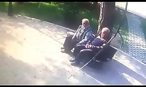Old bobtail outdoor kissing gay close to gay